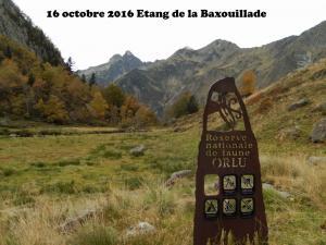2016-10-16 Baxouillade01