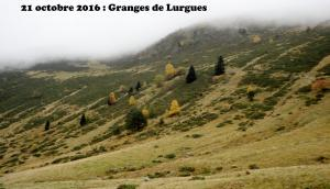 2016-10-21 Granges  lurgues01
