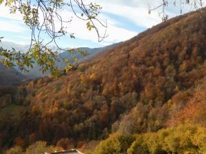 2016-11-21 Montagne de Lege 02
