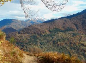 2016-11-21 Montagne de Lege 09