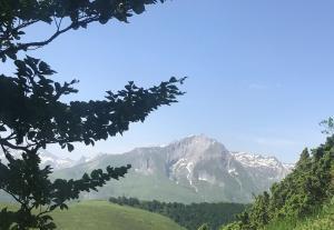 2019-06-25 Val d'Azun_22